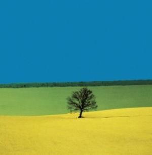 Mostra fotografica di Franco Fontana